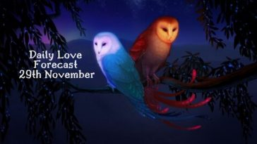 daily love forecast 29th November